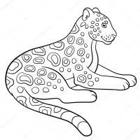 Jaguar Dibujo Para Colorear Dibujos Para Imprimir Y Colorear