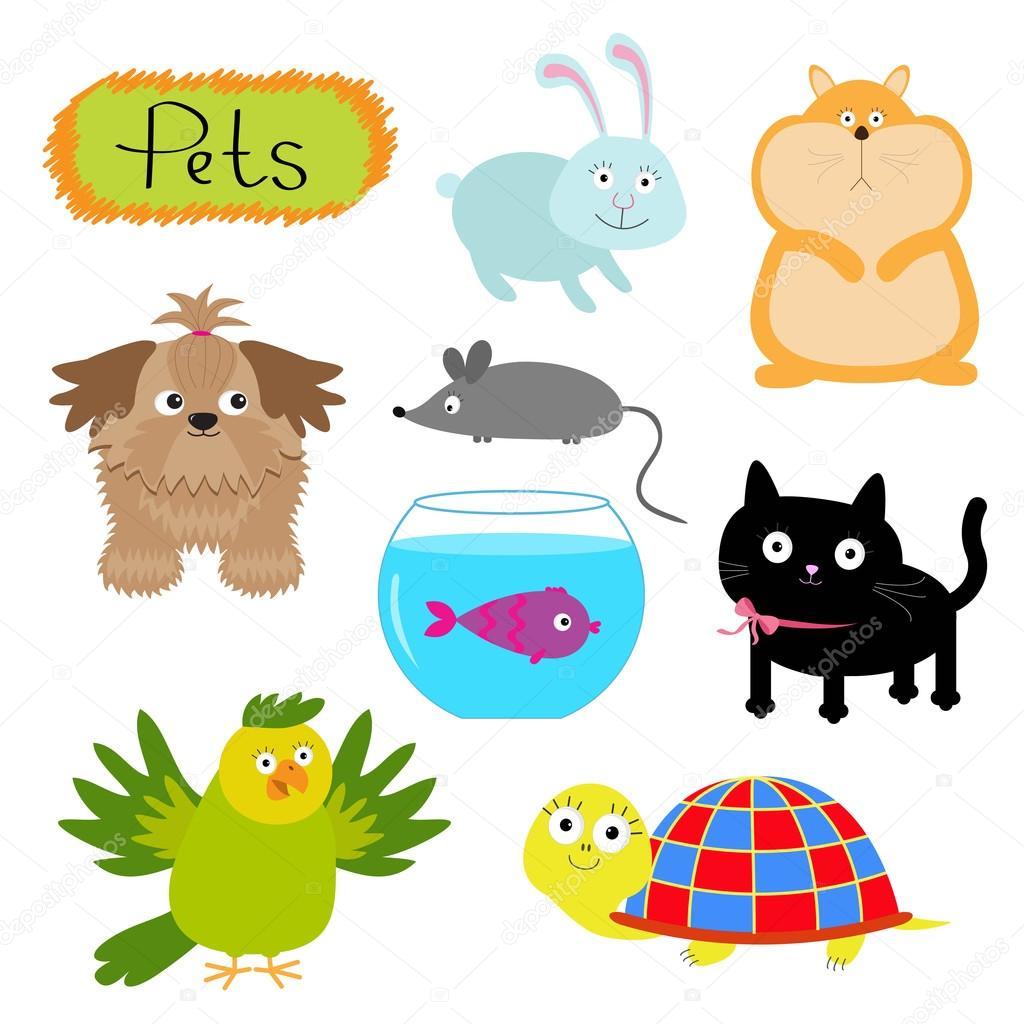 colorful pets cartoon stock