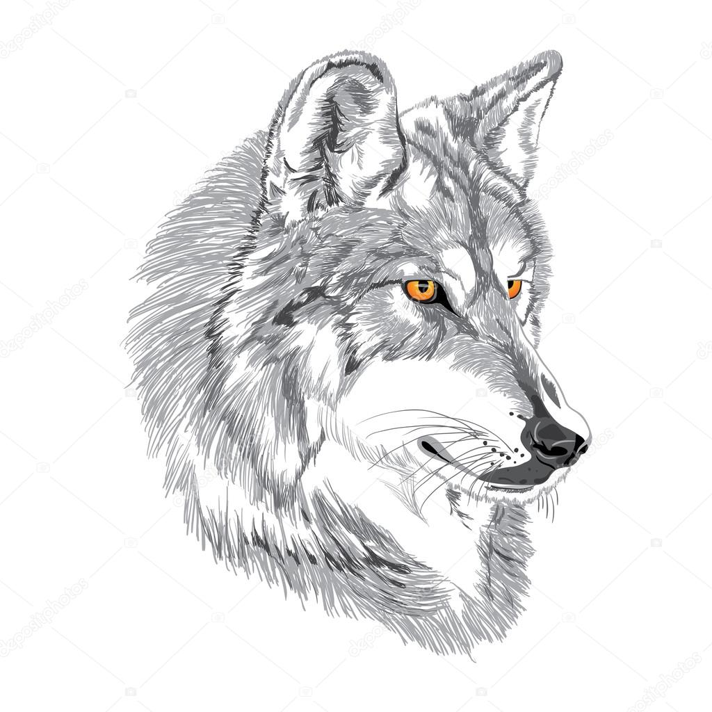 how to wolf whistle diagram harbor breeze wiring list of synonyms and antonyms the word muzzle