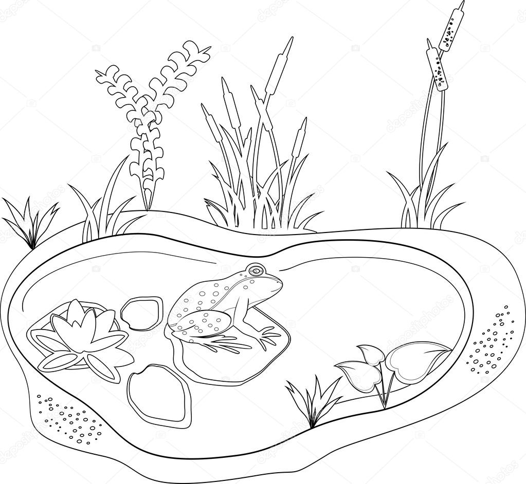 Colorir com um sapo e lagoa — Vetores de Stock