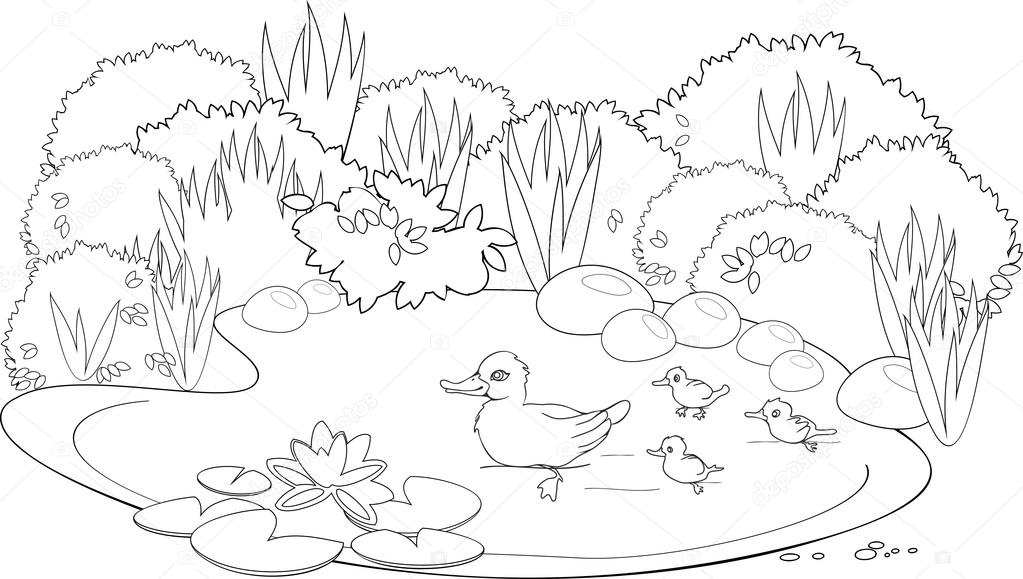 Coloring duck pond — Stock Vector © mariaflaya #90866246