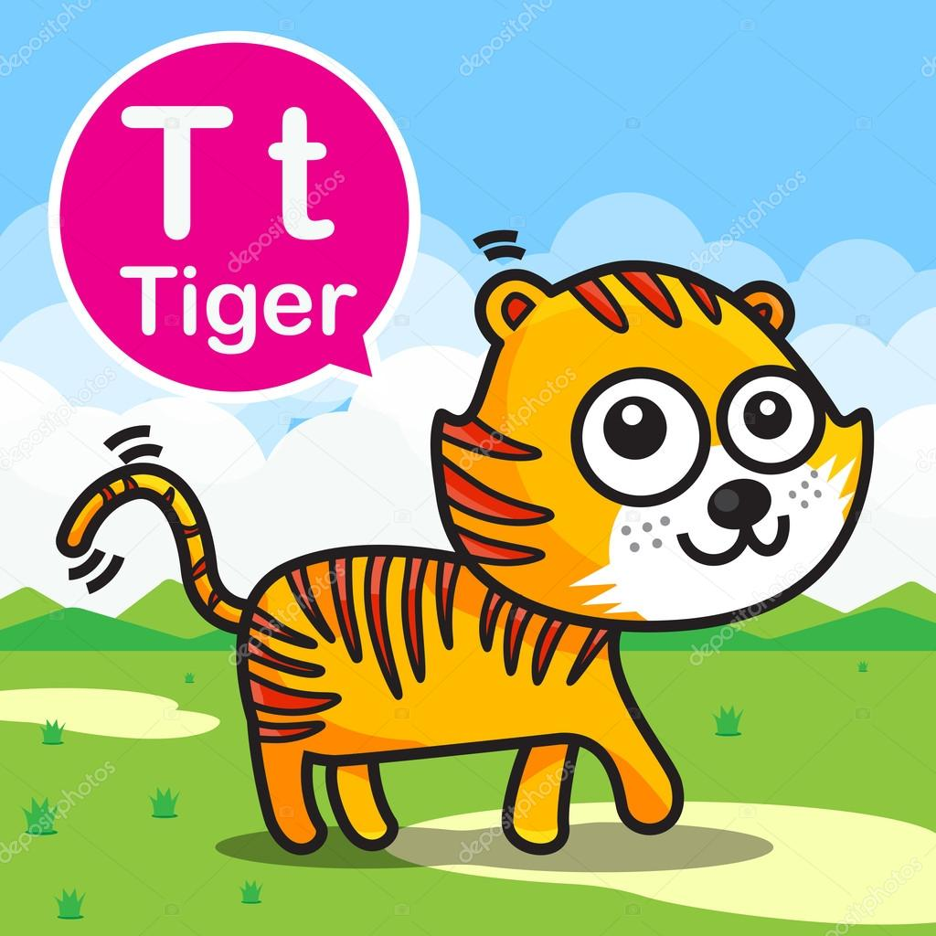 T Tiger Color Cartoon And Alphabet For Children To