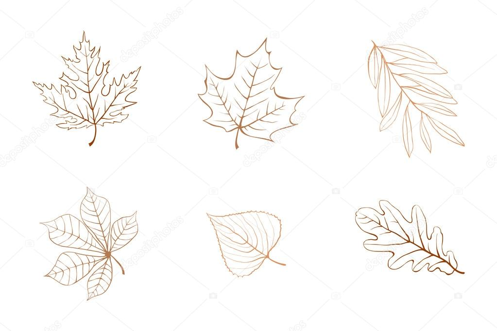 Outline Of A Fall Leaf Outline Autumn Leaves Stock Vector C Veronika By 59849893