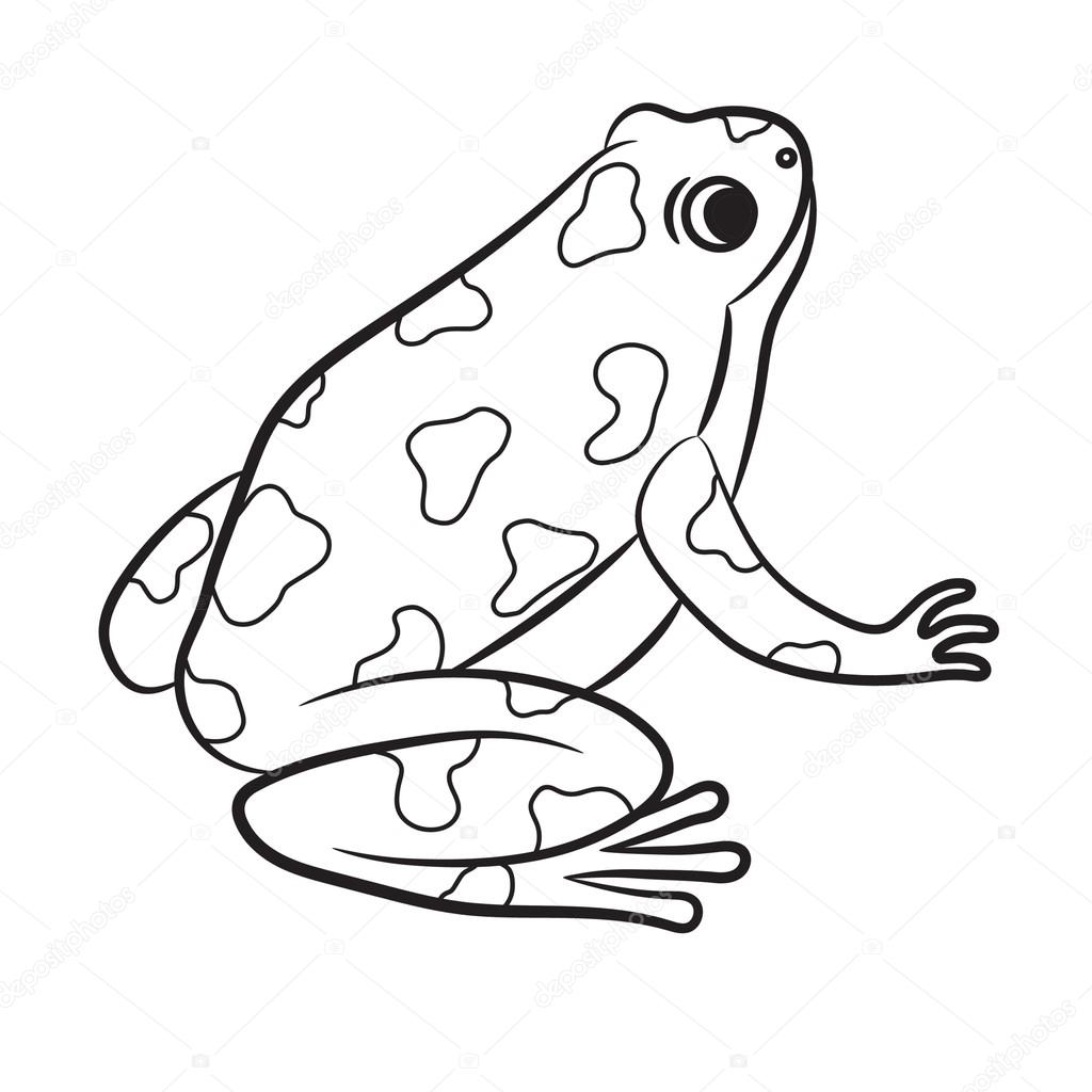 Cartoon of Poison-Dart Frog. Coloring page. Vector — Stock