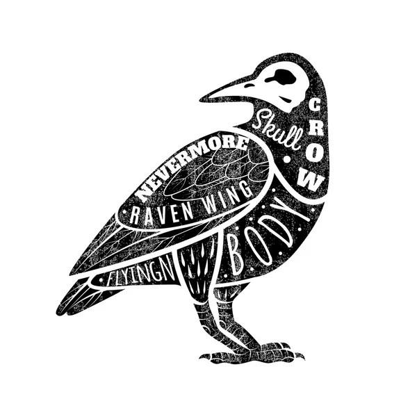 Drawing crow Stock Vectors, Royalty Free Drawing crow