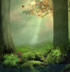 ᐈ Enchanted forest stock photos Royalty Free enchanted forest backgrounds backgrounds download on Depositphotos®
