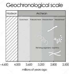 geochronological scale part 1 hadean and archean eon vector de stock [ 1024 x 1024 Pixel ]