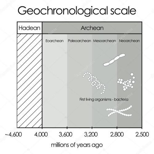 small resolution of geochronological scale part 1 hadean and archean eon vector de stock