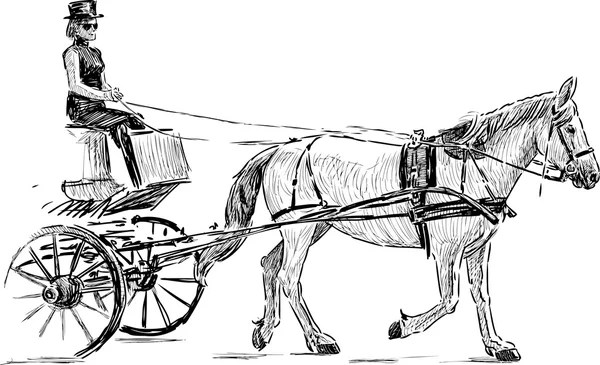 Horse drawn carriage Stock Vectors, Royalty Free Horse