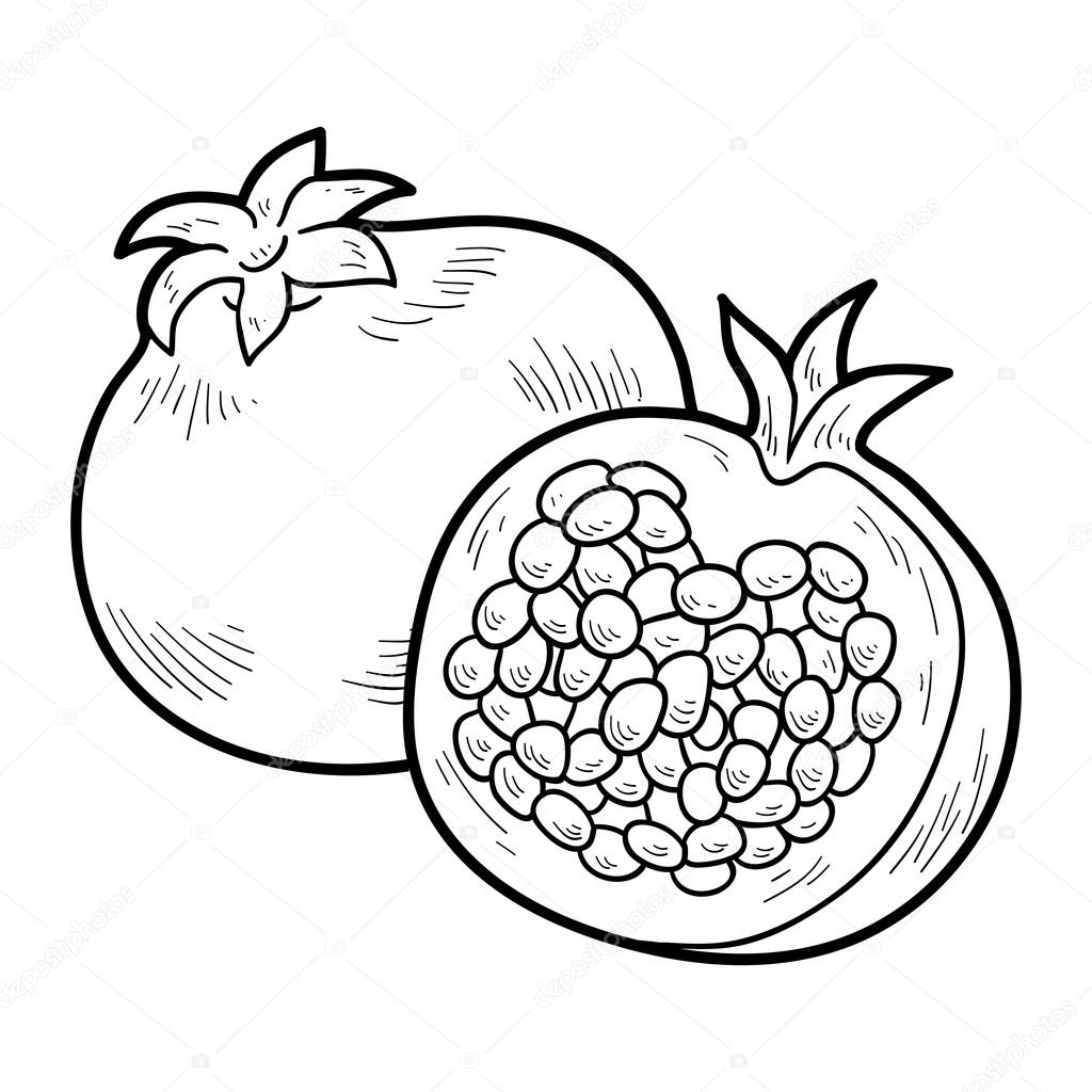 Coloring book: fruits and vegetables (pomegranate) — Stock