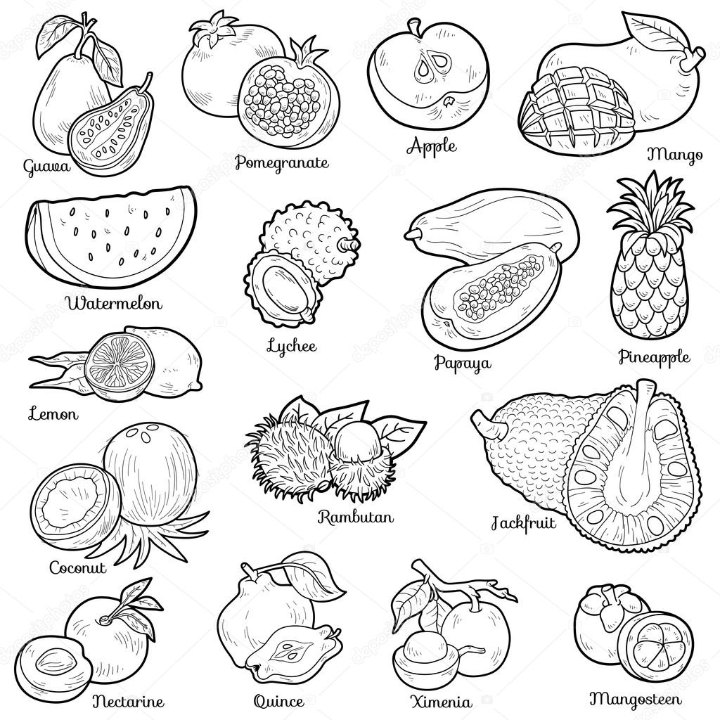 Colorless Set With Tropical Fruits Vector Cartoon