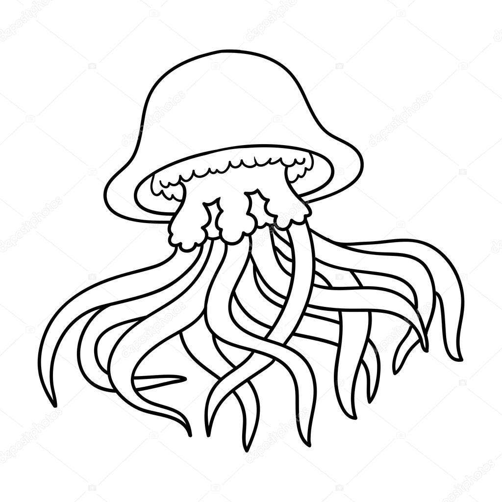 Coloring Book Jellyfish