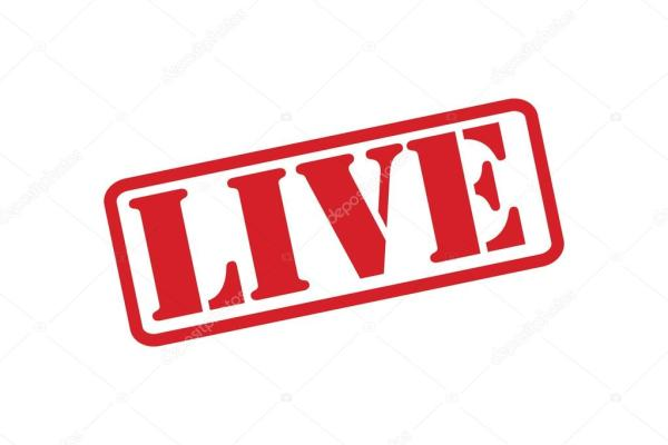 live rubber stamp vector over