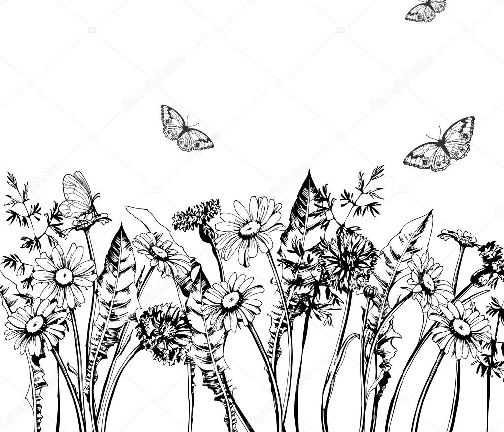 Summer Background With Blooming Wild Flowers, Daisies, Cornflowers, Grass,  With Butterflies. Template Vector. — Vector By Galina72