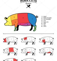 vector american us cuts of pork diagram vector by counterfeit [ 781 x 1024 Pixel ]
