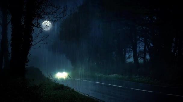 Car Parked At Night Wallpaper  Carro Atravessa A Floresta Em Noite De Tempestade V 237 Deo