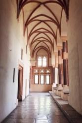 castle gothic chamber interior greatest depositphotos
