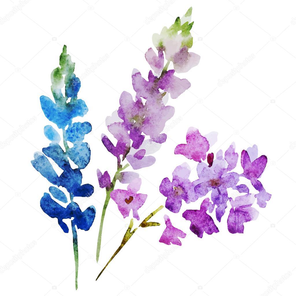 watercolor flowers stock vector