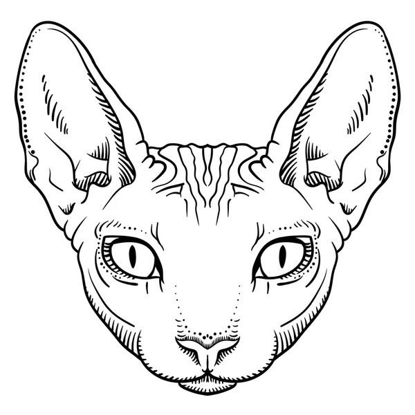 ᐈ Sphynx drawing stock illustrations, Royalty Free sphinx
