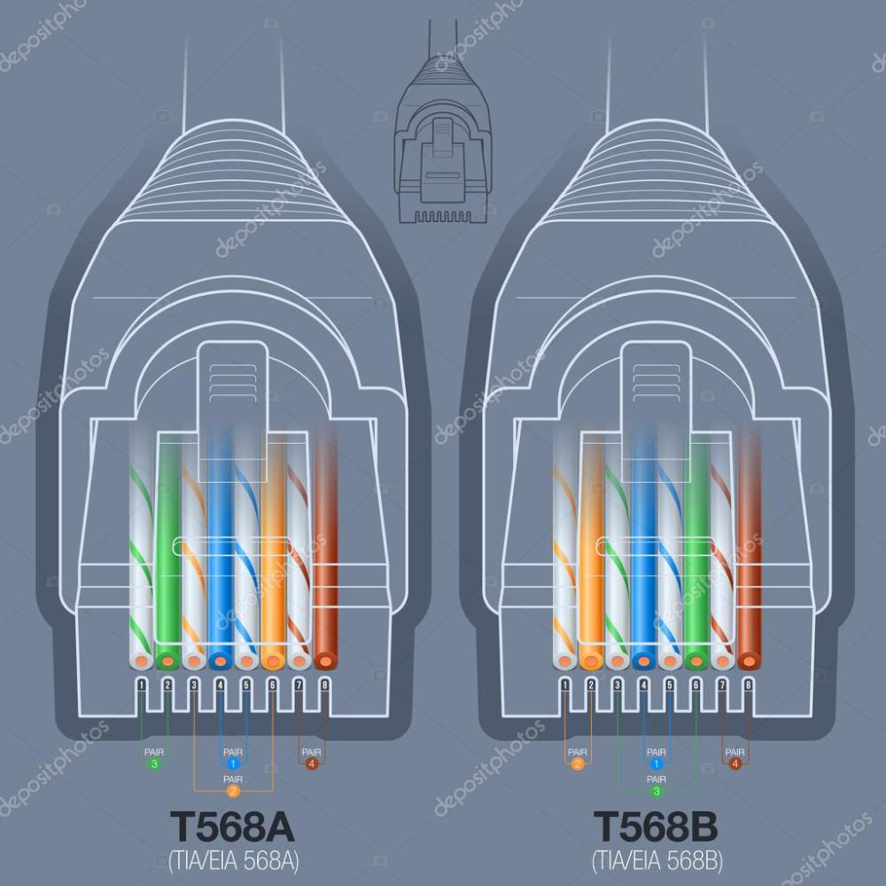 medium resolution of network cable connector wiring diagram stock vector