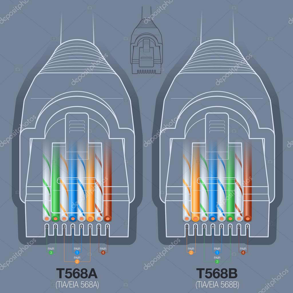 hight resolution of network cable connector wiring diagram stock vector
