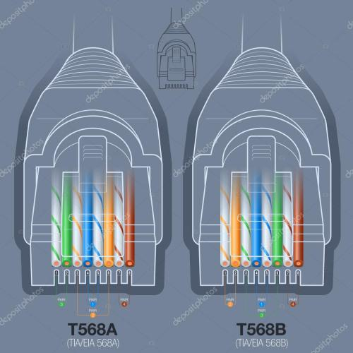 small resolution of network cable connector wiring diagram stock vector