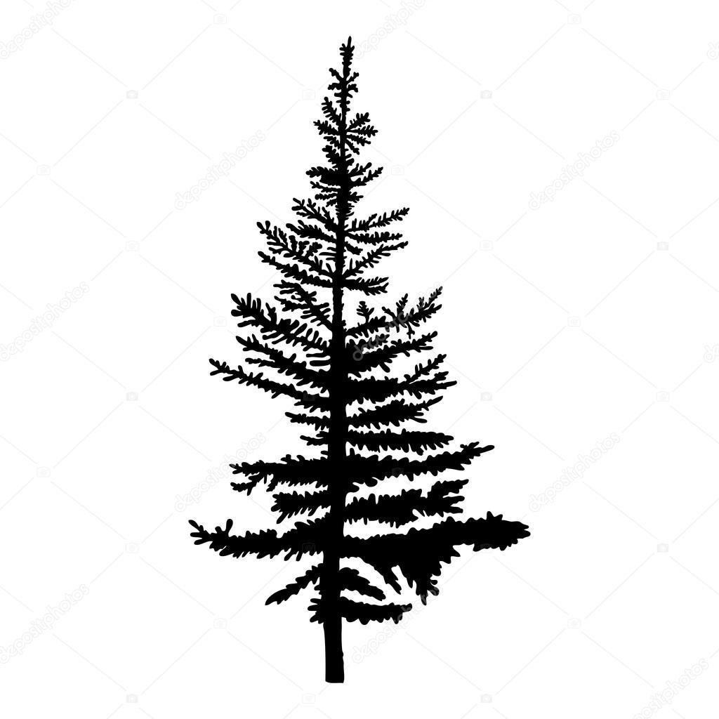 Textured Pine Tree Silhouette