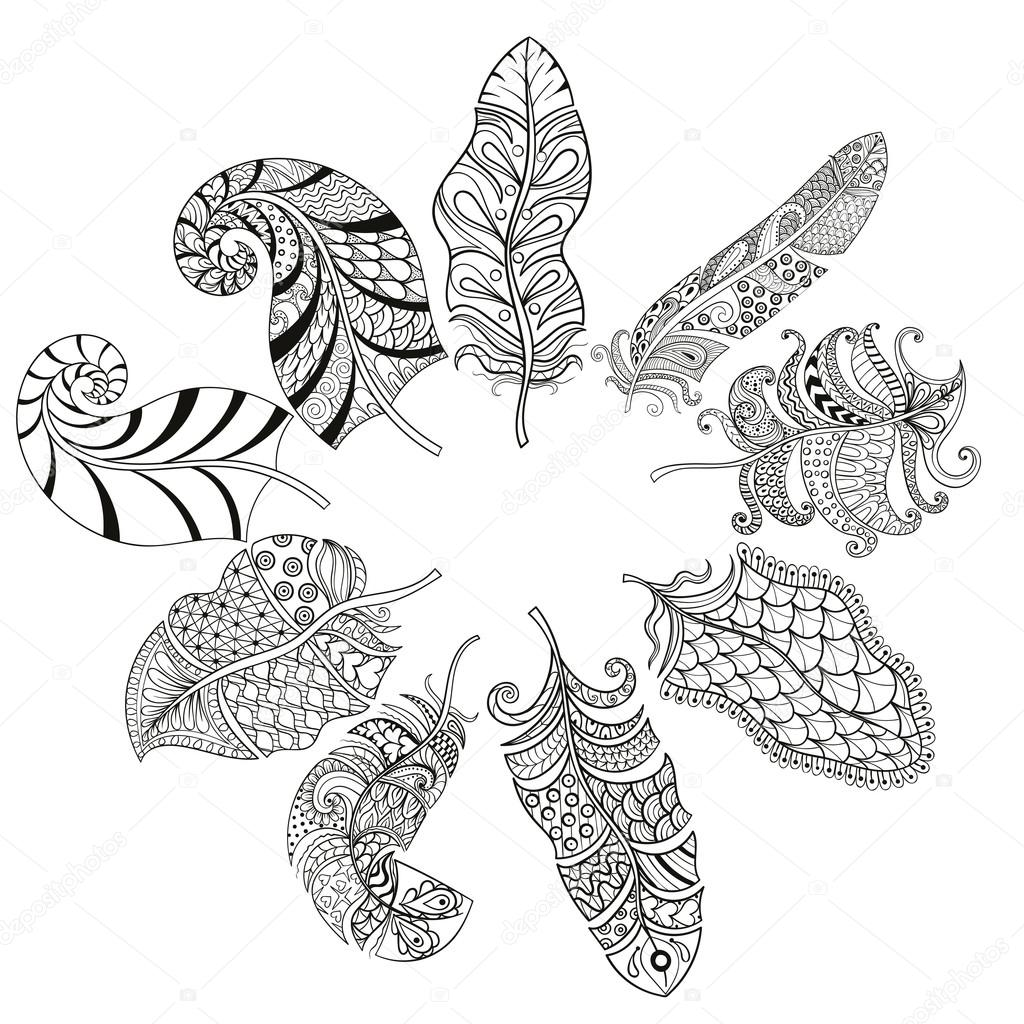 Zentangle stylized various feathers for coloring page