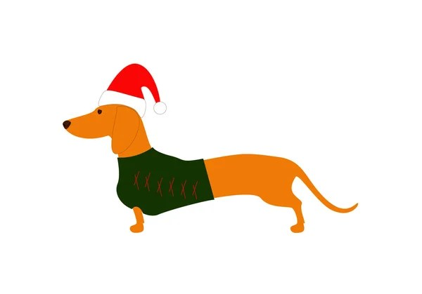 wiener dog stock vectors royalty