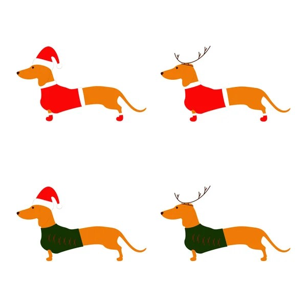 wiener dog stock vectors royalty