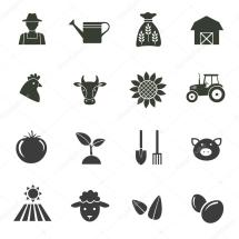 Farming Harvesting And Agriculture Icons Stock Vector