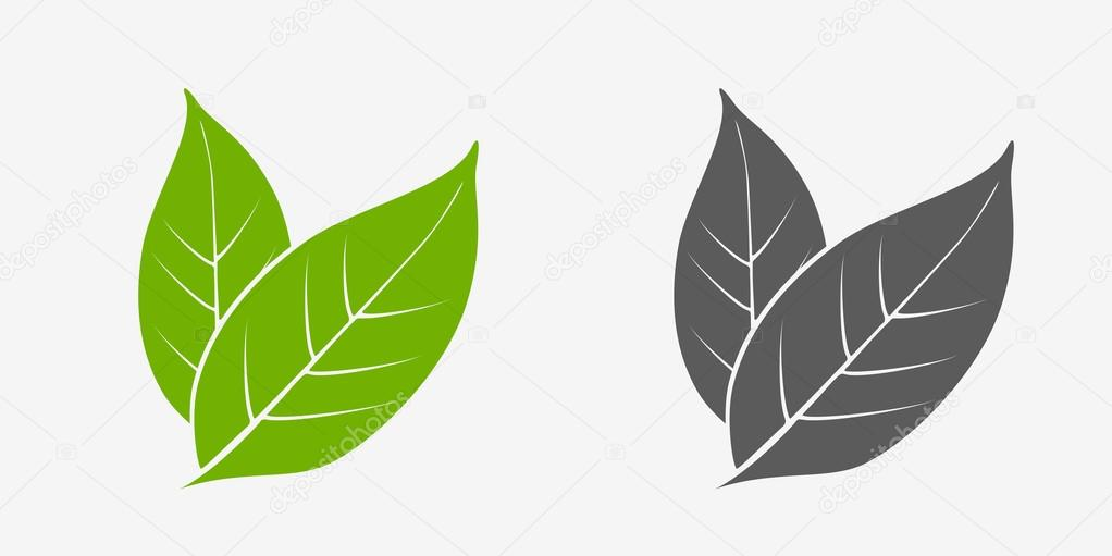 Tea leaves icon set. Green and gray. Isolated leaves on white background — Stock Vector © Woters #110295984