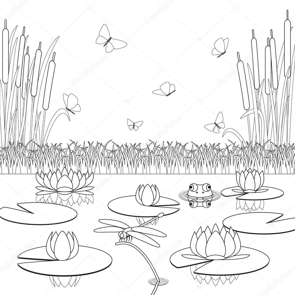 Página para colorear con habitantes del estanque y las