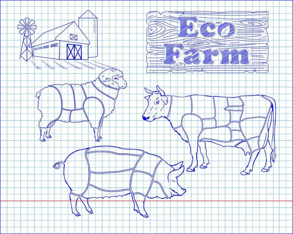 medium resolution of butchering beef diagram pork lamb and farm drawn in pen vector by bugege