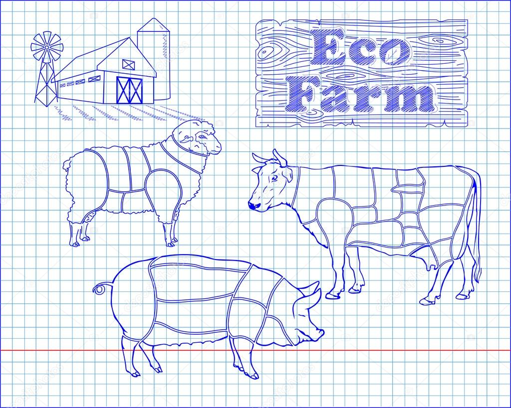 hight resolution of butchering beef diagram pork lamb and farm drawn in pen vector by bugege