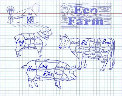 small resolution of butchering beef diagram pork lamb and farm drawn in pen vector by bugege