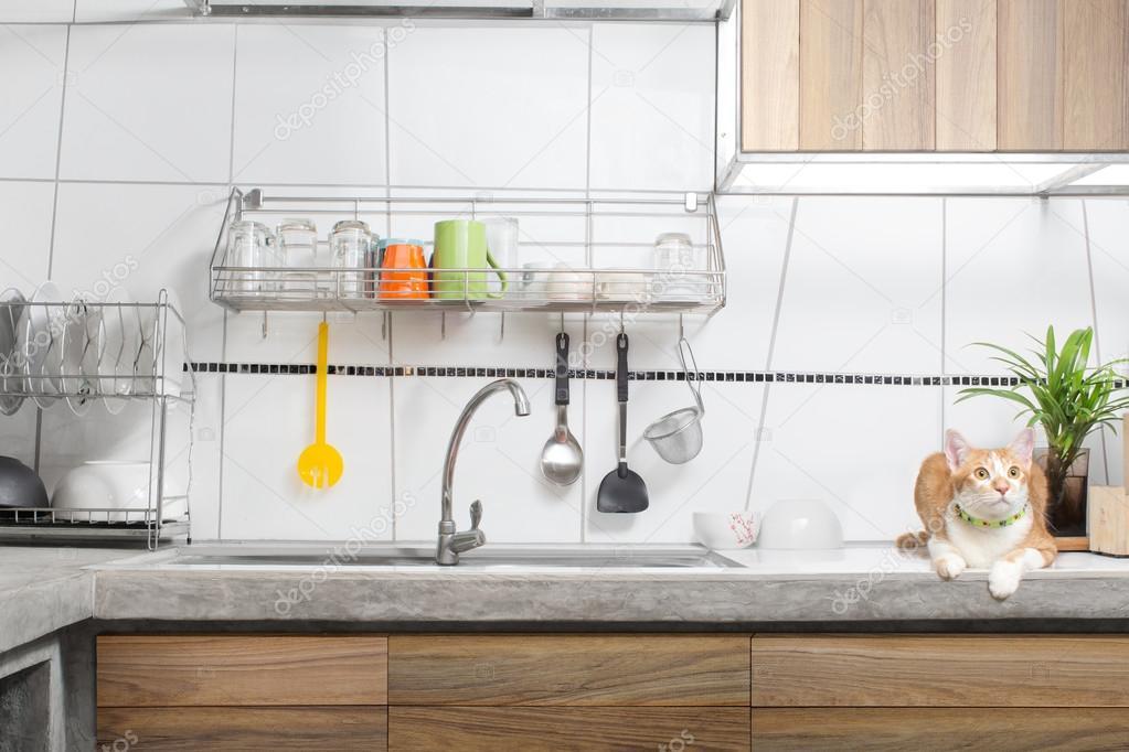 kitchen sink white microwave cart 白色的厨房水槽内部 图库照片 c noreefly 119348830