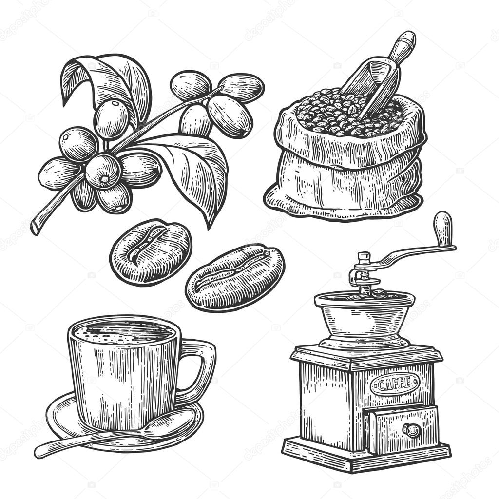 Sack With Coffee Beans With Wooden Scoop And Beans Cup
