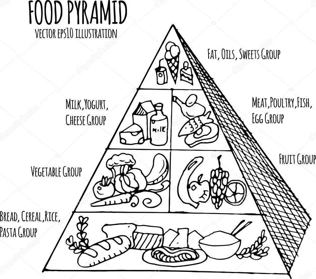 ručně tažené infographic ilustrace potravinová pyramida