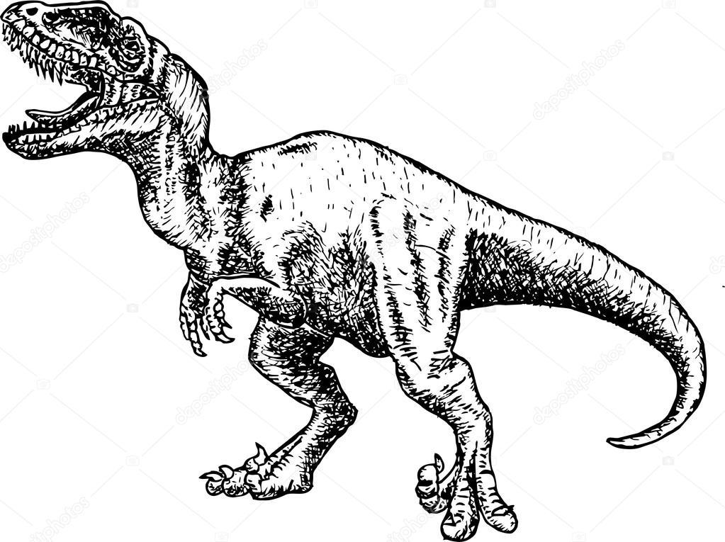 T rex dinosaurus. kreslení tužkou-dinosaurus — Stock