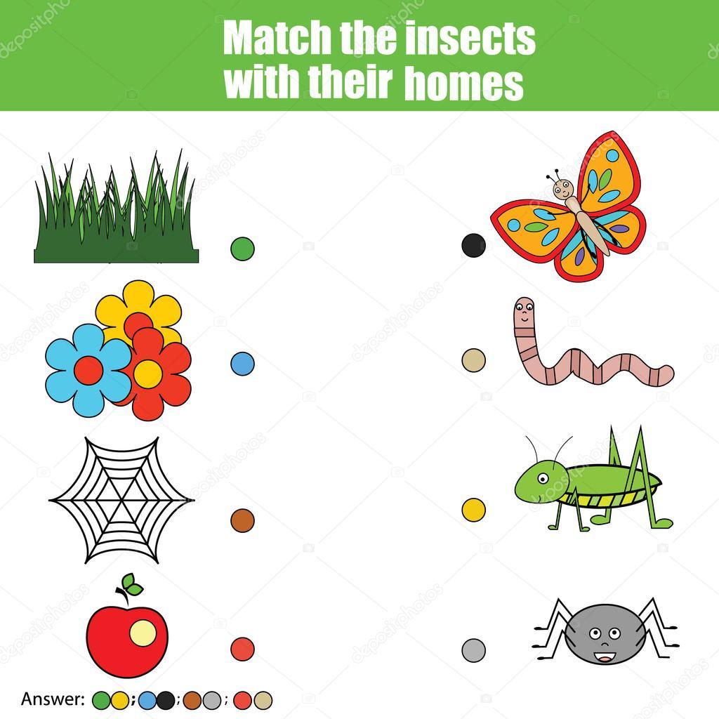 Matching Children Education Game Kids Activity Match