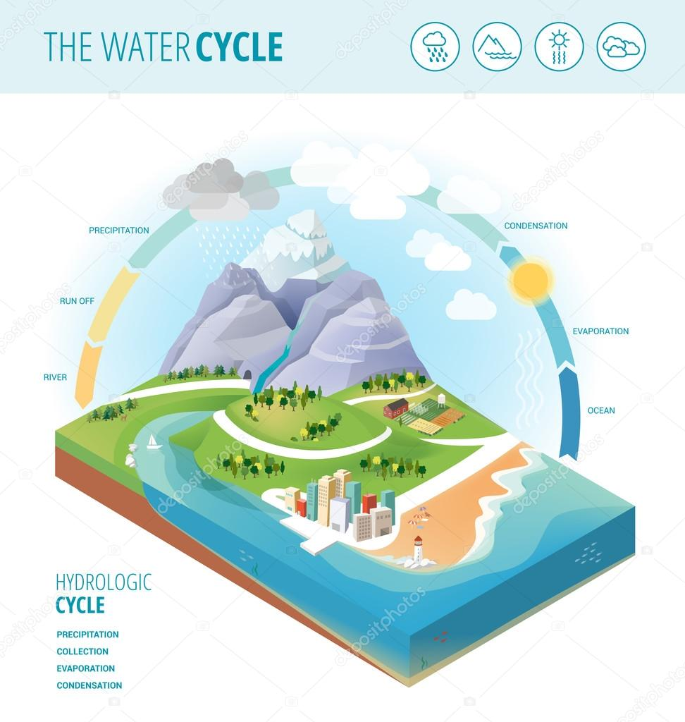medium resolution of the water cycle diagram showing precipitation stock vector
