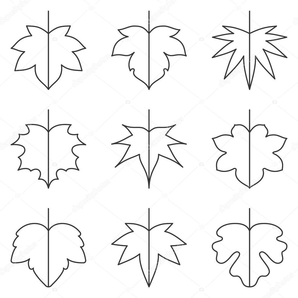 Leaf Icon Maple Leave Icon Set Thin Line Icon Autumn