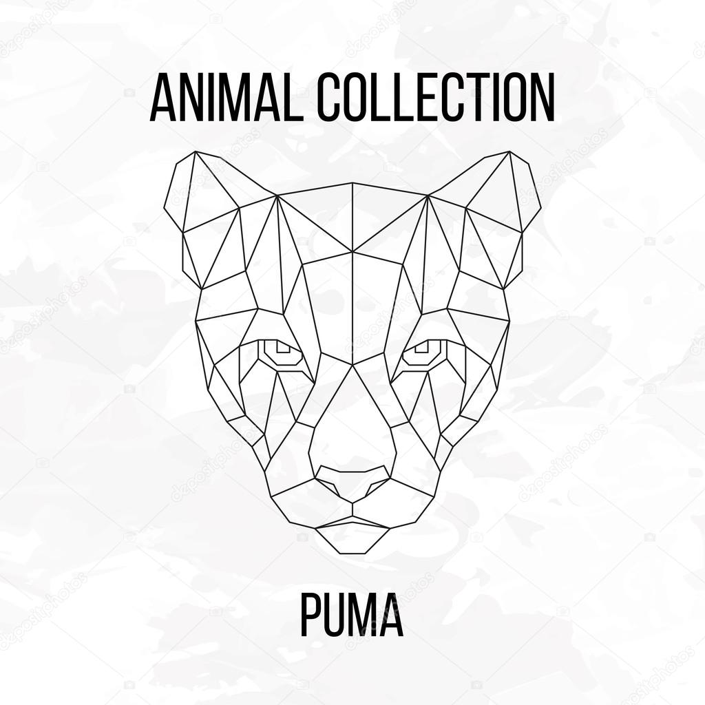 Geometric puma head — Stock Vector © aliakseizykau.gmail