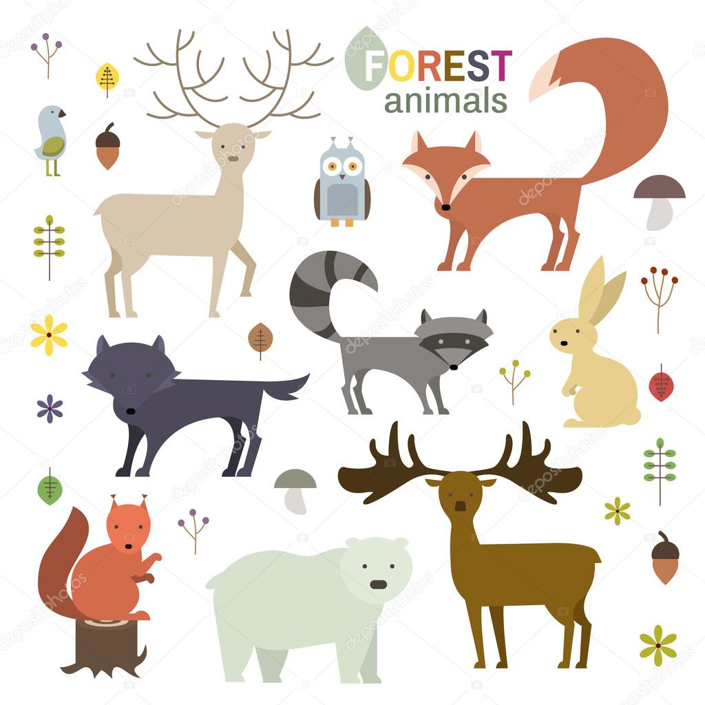 Forest Animals Set In Flat Style Wolf Fox Raccoon Owl