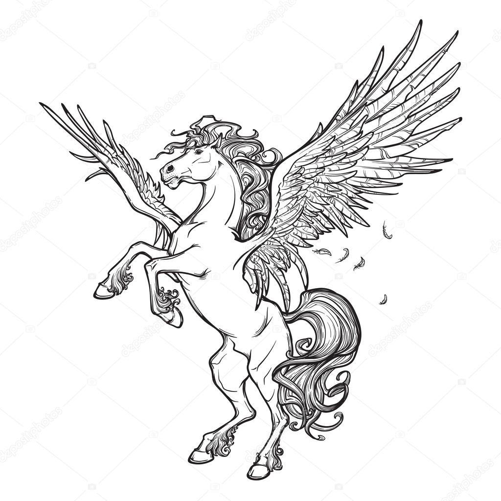 Pegasus supernatural beast. Sketch isolated on white