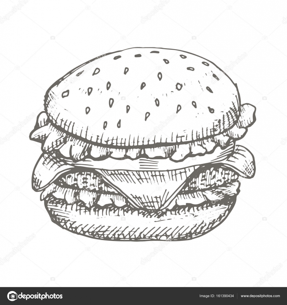Vector Vintage Burger Drawing Hand Drawn Monochrome Fast