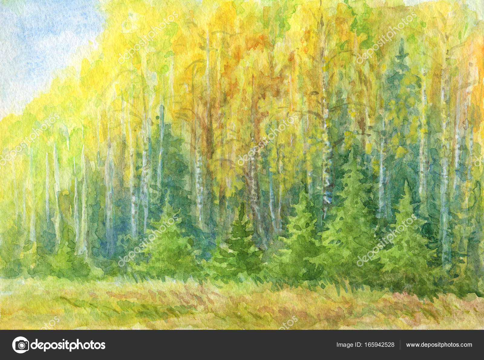 Disegno ad acquerello paesaggio di autunno foresta  Foto Stock  rosinka 165942528