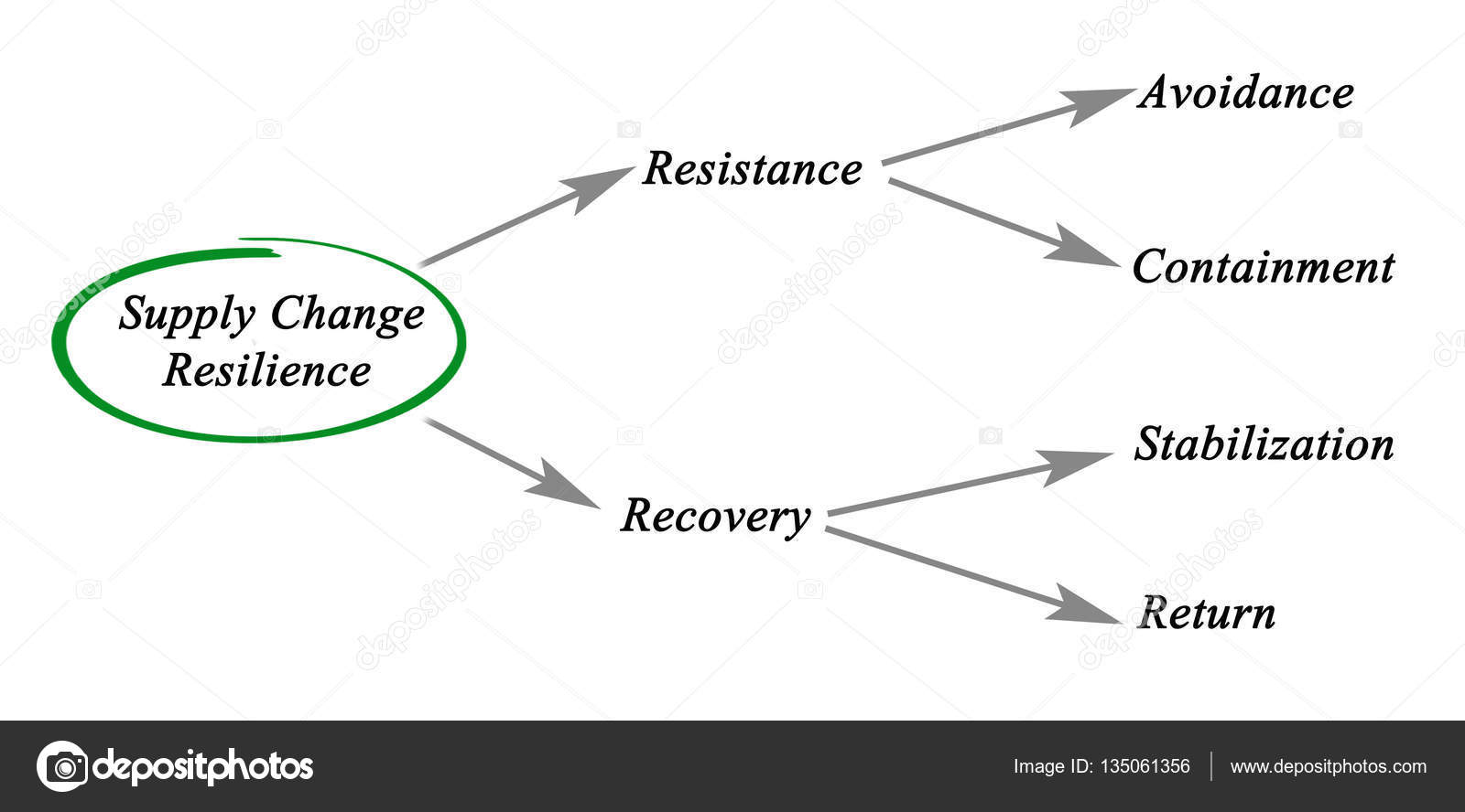 hight resolution of diagram of supply chain resilience photo by vaeenma