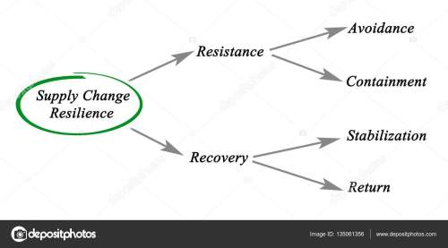 small resolution of diagram of supply chain resilience photo by vaeenma